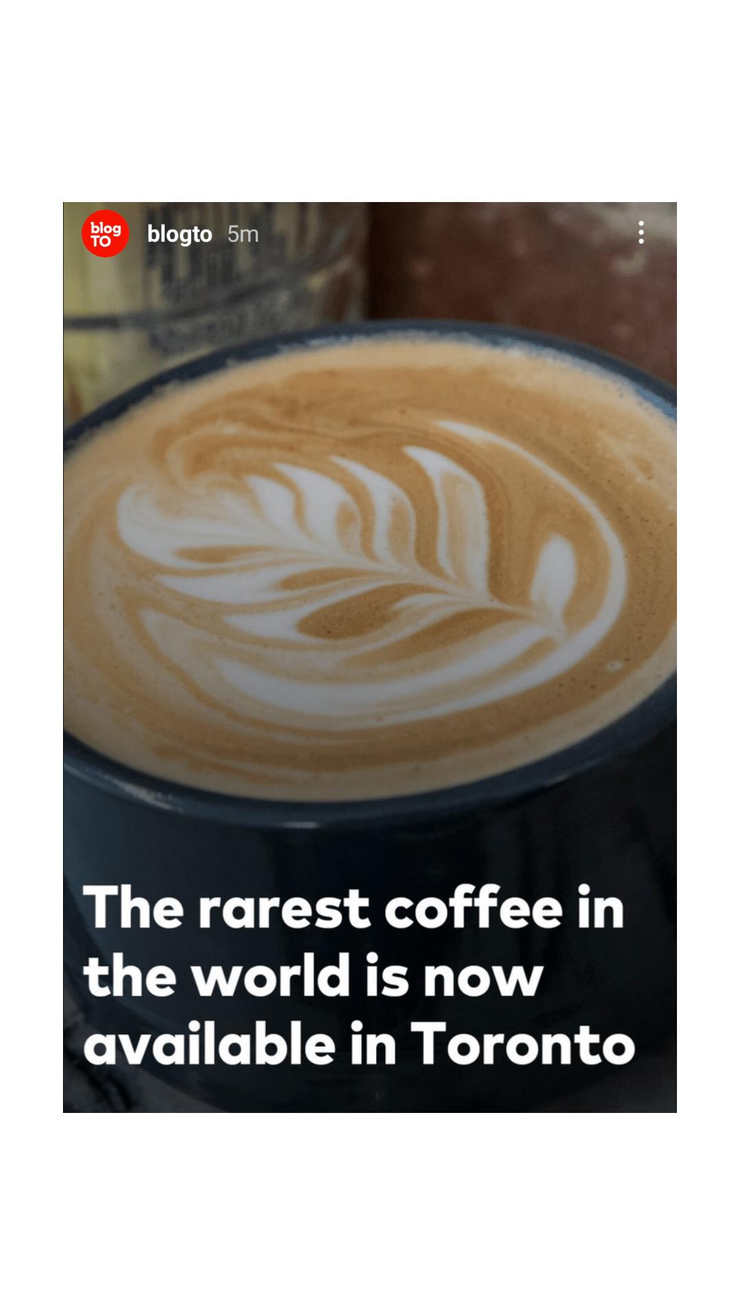 LeClair Organics featured on blogTO, worlds rarest coffee in Toronto, specialty coffee Toronto